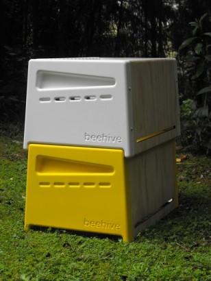 Urban Beehive: Rowan Dunford