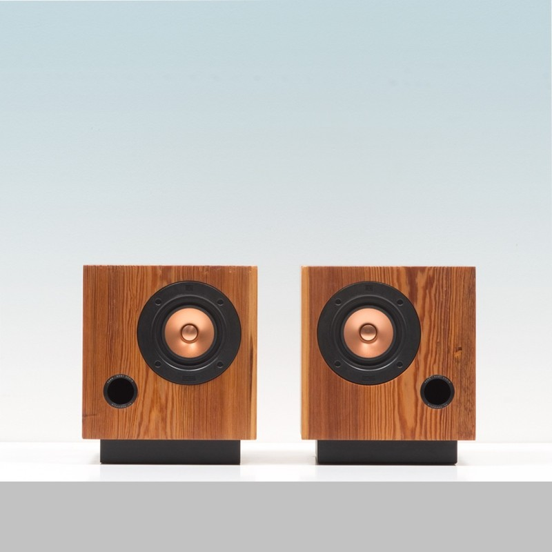 Fern_and_Roby-cubespeakers-01