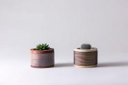 "Shayal Chand: ""Cacti Planters"""