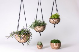 "Troy Darrow: ""Plywood Planters"""